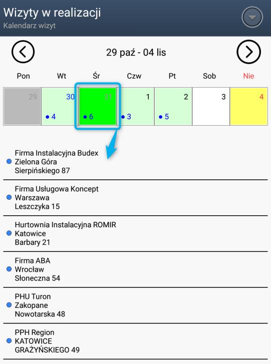 Kalendarz tygodniowy z wizytami do realizacji w systemie dla PH